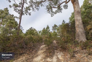 Lot 1 Seventh Day Road, Glen Huon, Tas 7109