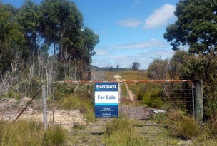 Lot 4 Zeehan Highway, Zeehan, Tas 7469