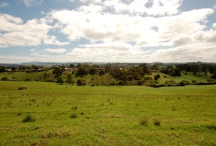 Lot 1 OLD CORAMBA ROAD, Dorrigo, NSW 2453