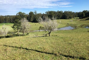 Lot 3 Niks Way, Wirrimbi, NSW 2447