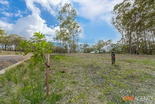 107 Lake Forest Drive, Murrays Beach, NSW 2281