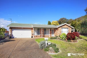 3 Nepean Place, Albion Park, NSW 2527