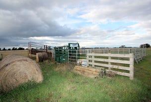 100 Warrowie Road, Irrewarra, Vic 3249
