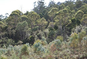 Lot 1  Dilgers Road, Mathinna, Tas 7214