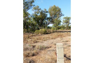 Walgett Rd, Pilliga, NSW 2388