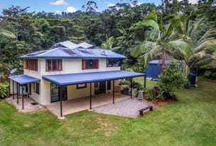 49 Carbeen Road, Daintree, Qld 4873