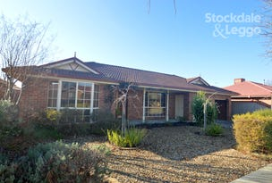 3 KATHLEEN COURT, Wangaratta, Vic 3677