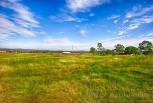 Lot 2 - 97 Elderslie Rd, Branxton, NSW 2335