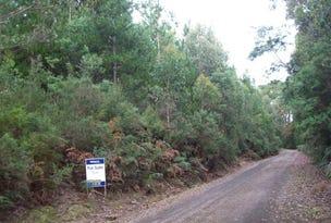 Chilcotts Road, Sprent, Tas 7315