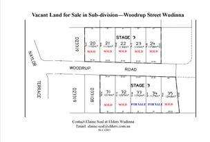 33 & 34 Woodrup Street, Wudinna, SA 5652