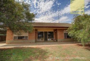 53 Tonkin Avenue, Barmera, SA 5345