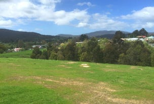 Lot 23 Silver Hill Road, Cygnet, Tas 7112
