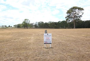 Lot 224 Hillview, Louth Park, NSW 2320