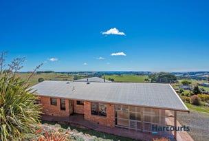 108 Dudfields Road, Mount Hicks, Tas 7325