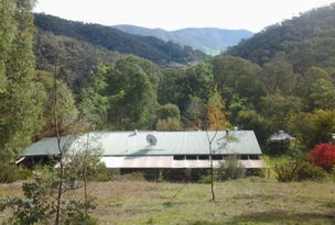1711 Thowgla Road, Thowgla Valley, Vic 3707
