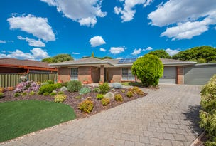 10 Palm Crescent, Old Reynella, SA 5161