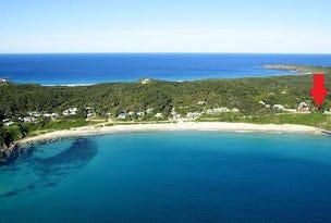 6 Kinka Road, Seal Rocks, NSW 2423