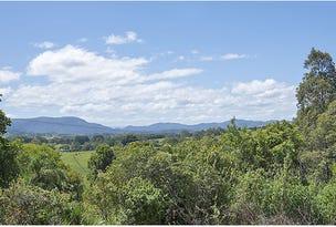 Lot 1 425 Tyagarah Road, Myocum, NSW 2481