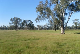 lot 51b Pagets Road, Baddaginnie, Vic 3670