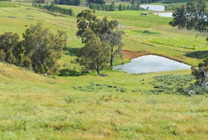 Lot 251 Bangadang Road, Beelerup, WA 6239