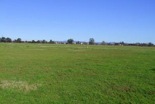Lot 44 Darlington Road, Dunolly, NSW 2330