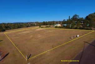 Lot 10 Blue Gum Road, Pie Creek, Qld 4570