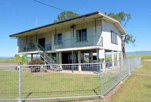 1419  Abergowrie Road, Lannercost, Qld 4850