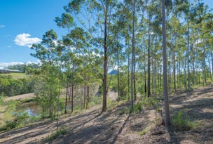 293 Black Mountain Range Rd, Black Mountain, Qld 4563