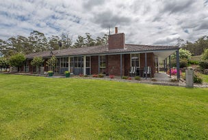 70 Terrys Hill Road, Goshen, Tas 7216