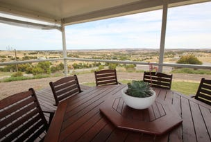 128 Thornbill Road, Boston, SA 5607