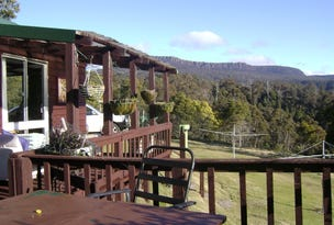 134 Tiers View Road, Golden Valley, Tas 7304