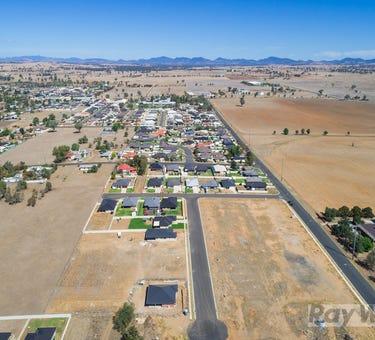Northern Lights Estate, 105/117 Goonan St, Westdale, NSW 2340