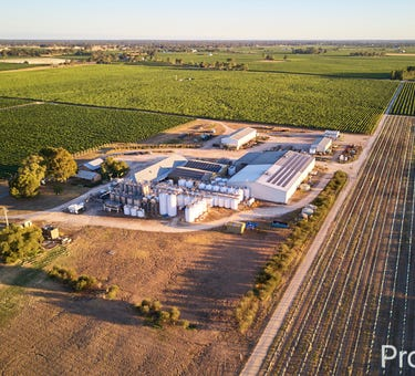Katnook Estate 15310 Riddoch Highway, Coonawarra, SA 5263