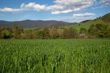 Mount George NSW 2424 - Image 4