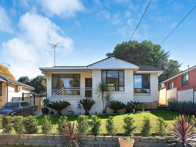 19 Manuka Street, Constitution Hill, NSW 2145