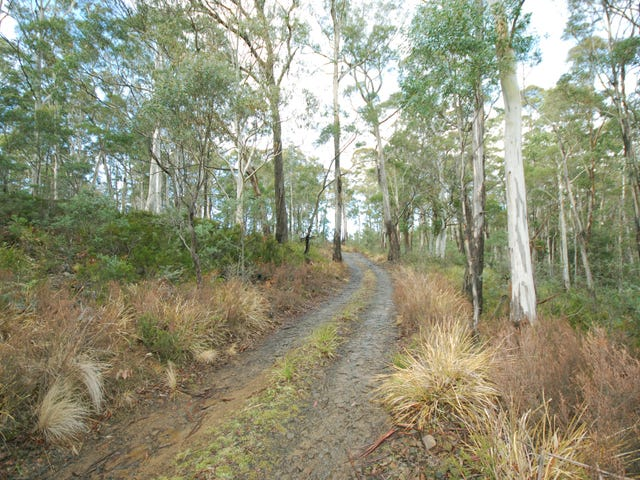 2302 Victoria Valley Road, Victoria Valley, Tas 7140