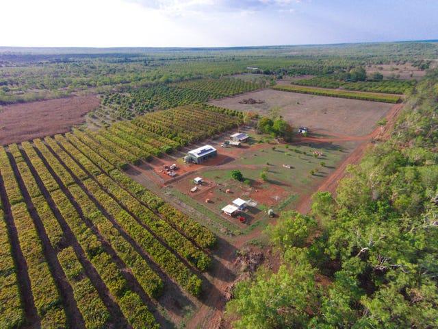 270 Golding Road, Acacia Hills, NT 0822