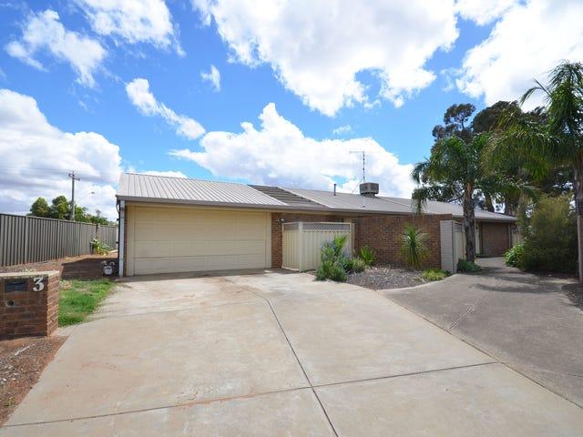 3 Canberra Court, Moama, NSW 2731