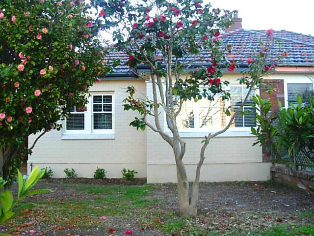 94 High Street, Willoughby, NSW 2068