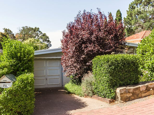 71 Cooper Place, Hazelwood Park, SA 5066
