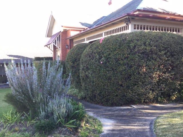 238 Penshurst Street, Willoughby, NSW 2068