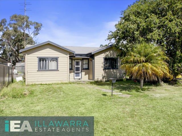 113 Parkes Street, Oak Flats, NSW 2529