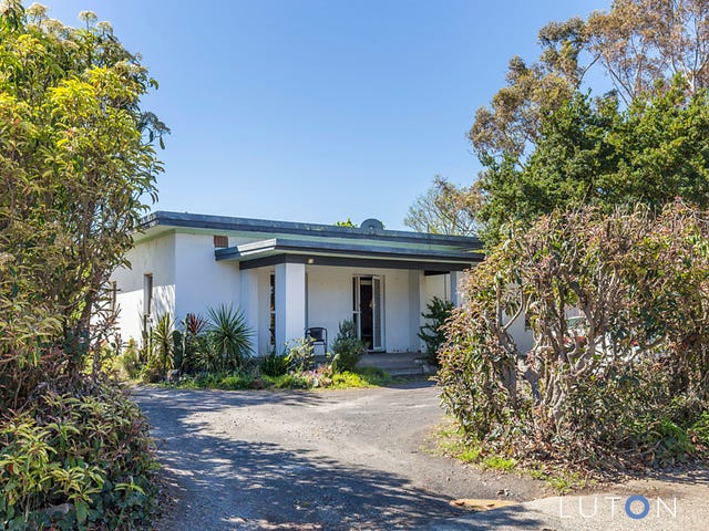 13 Batman Street, Braddon, ACT 2612