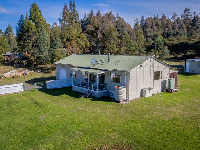 260 Bradys Lake Road, Bradys Lake, Tas 7140