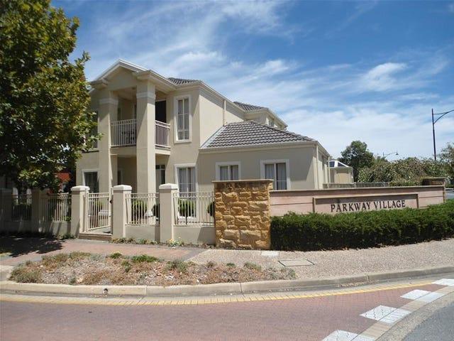 12 Willowood Court, Mawson Lakes, SA 5095