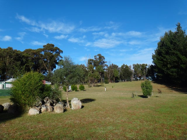 41 Cleland Drive, St Helens, Tas 7216