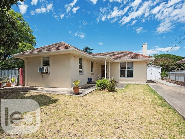 26 Mayfield Avenue, Hectorville, SA 5073
