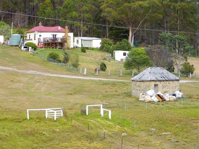 631 Elephant Pass Rd, Gray, Tas 7215