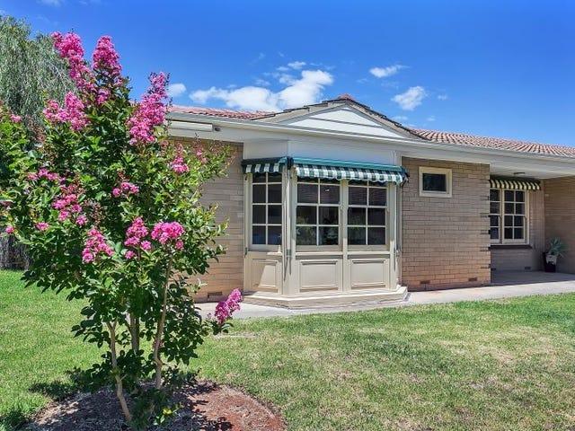 Homette 5/71-73 Phillis Street, Maylands, SA 5069