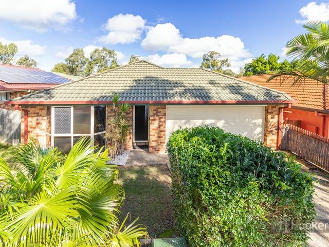 13 Goldeneye Place, Forest Lake, Qld 4078